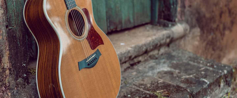 Guitars number taylor lookup serial Taylor guitars