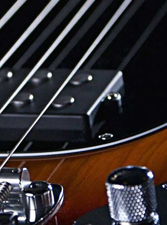 differences between musicman stingray bass