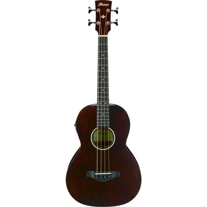 Ibanez AVNB1E-BV Artwood Vintage Acoustic Bass Palor