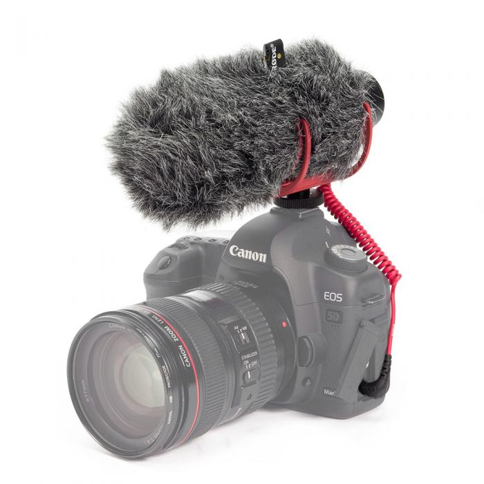 Rode VideoMic GO On-Camera Microphone with Windshield Mounted on Camera