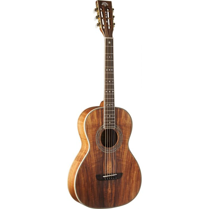 Washburn WP55NS Parlour Acoustic Guitar