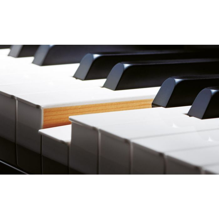 Casio GP-500 Celviano Grand Hybrid Digital Piano Wooden Keys