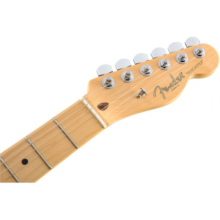 Headstock and Maple Fretboard