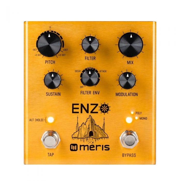 Front view of a Meris Enzo Synth Pedal