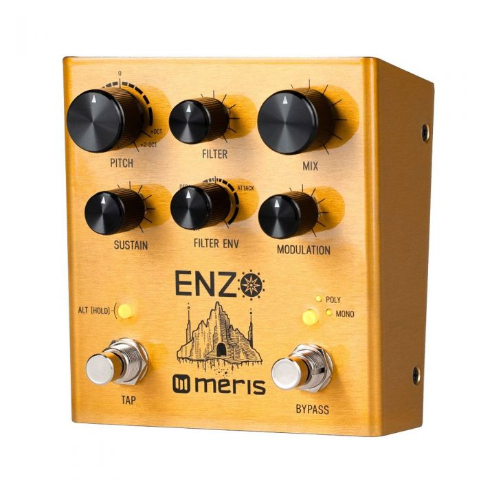 Front right angled view of a Meris Enzo Synth Pedal