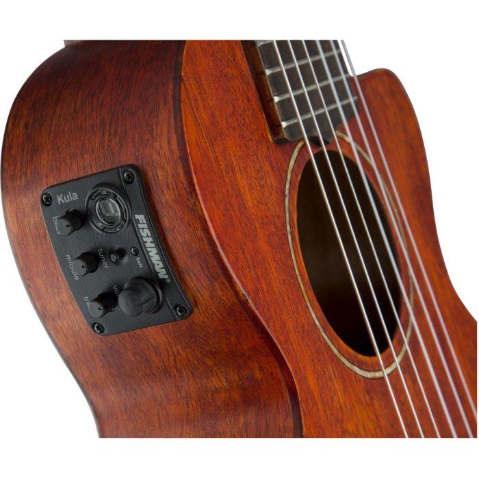 Ovankol fingerboard guitar