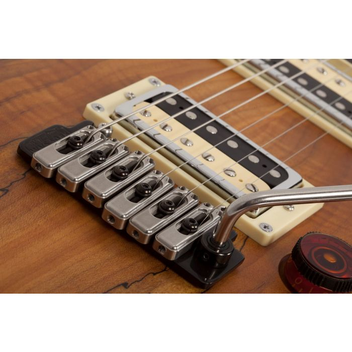 C-1 EXOTIC SPALTED MAPLE SNVB TREM CLOSE
