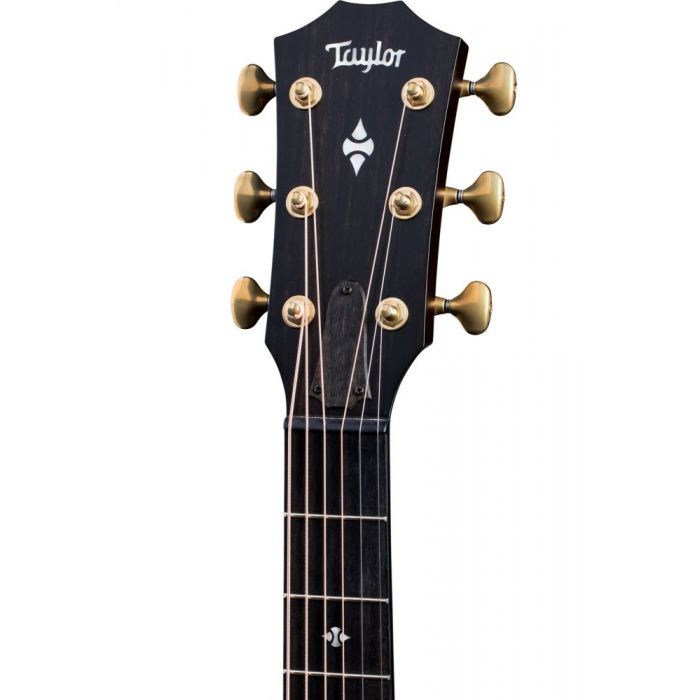Front view of the headstock on a Taylor Builders Edition 324ce Electro Acoustic Guitar