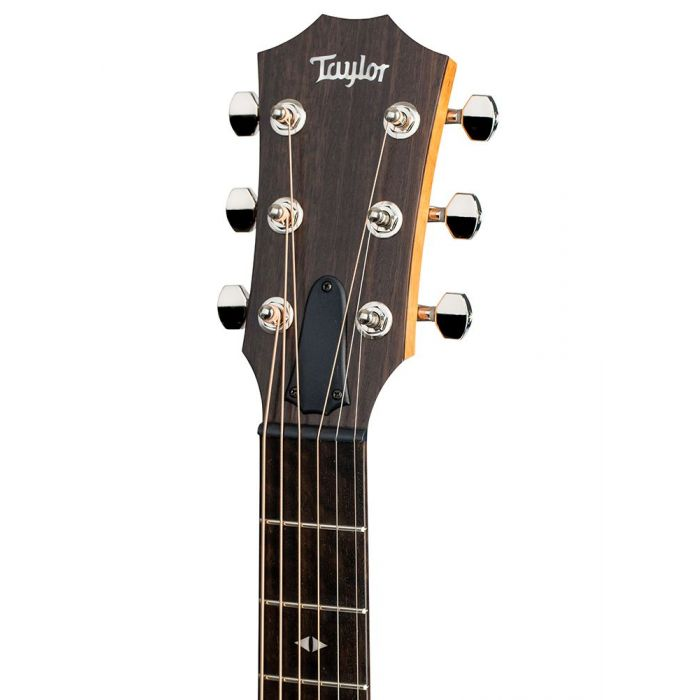 Closeup of the headstock on a Taylor GT Urban Ash Acoustic Guitar