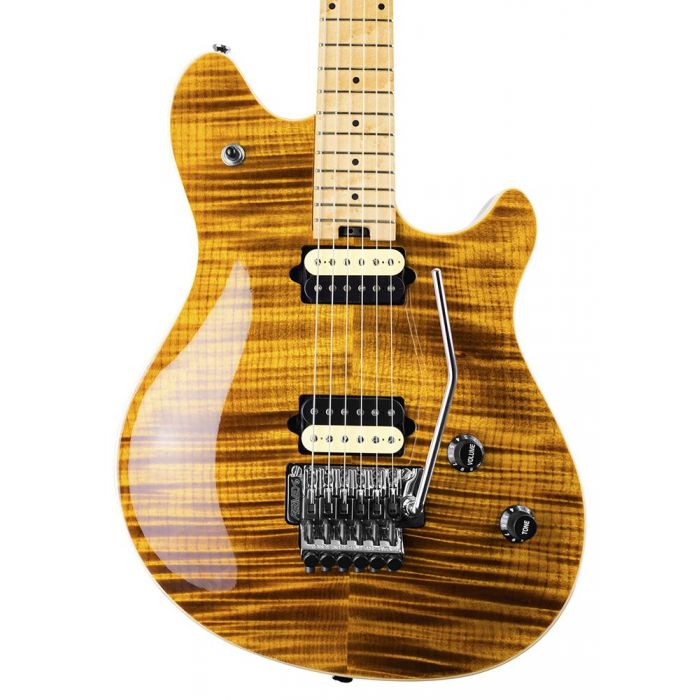 Closeup of the body on a Peavey HP2 Electric Guitar Tremolo, Tiger Eye