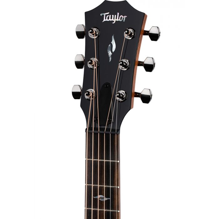 Closeup of the headstock on a Taylor GT 811 Acoustic Guitar, Natural