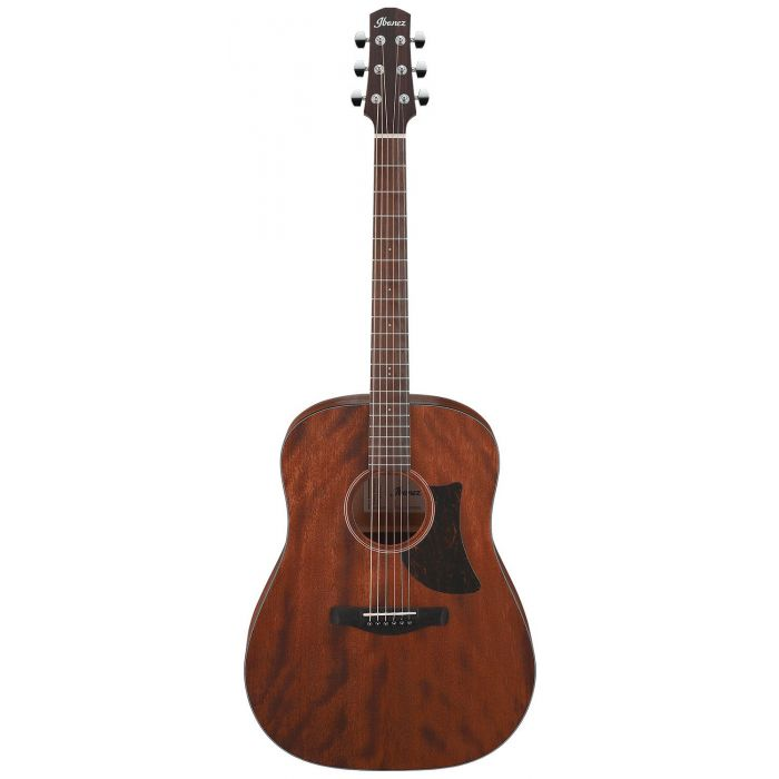 Ibanez AAD140-OPN Advanced Acoustic Guitar, Open Pore Natural front view
